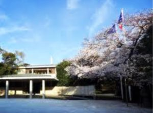 桜が美しいフランス大使館